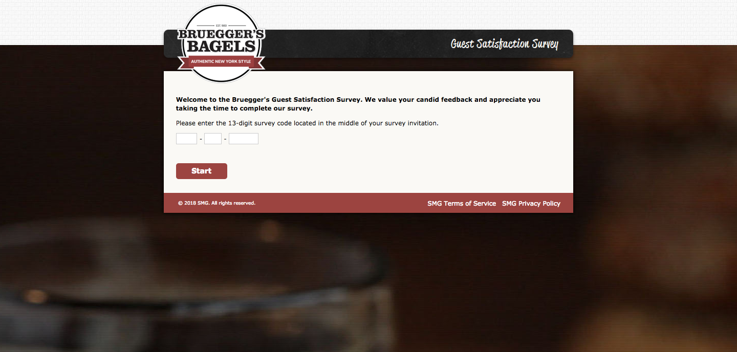 Bruegger's Bagel Survey